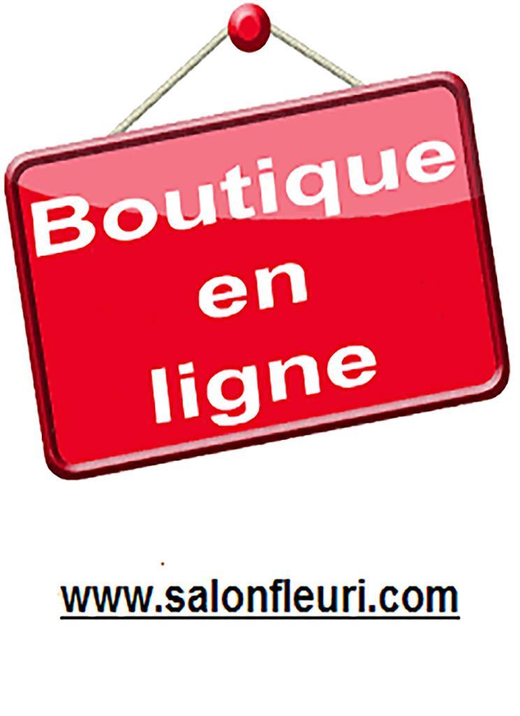 Au Salon Fleuri Inc